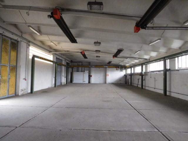 ...Halle mit 300 m² auf Betonboden...